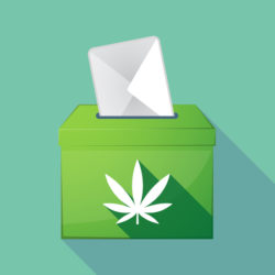 Marijuana vote ballot measure